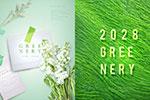 小清新绿植海报