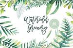 绿色植物水彩插画