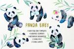 熊猫宝宝水彩插画