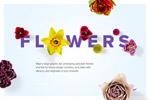 植物花朵元素样机