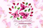 水彩红色花卉插画