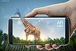 长颈鹿AR海报