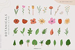 水果植物抽象插画