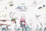 北极水彩动物和女孩