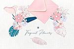 热带花卉插画