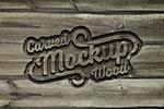 雕刻木纹Logo样机
