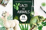 仙人掌与动物插画