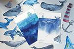 手绘水彩海洋鲸鱼