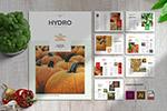 健康食品画册模板