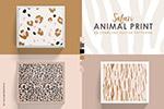 动物皮毛图案纹理