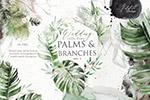 棕榈和花瓣婚礼插画