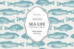海洋生活插图