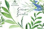 绿色水彩植物