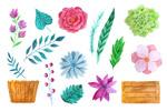 水彩花卉元素