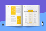 移动营销提案模板