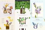 精品化妆品网页