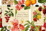 复古风格水果花卉