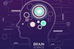 大脑科技神经网络