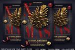 圣诞新年派对海报
