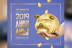 新年小猪海报