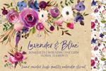 薰衣草蓝色水彩花卉