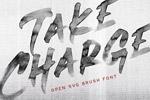 Take-Charg