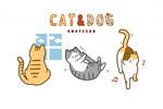 宠物小猫小狗插图