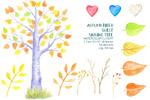 水彩秋季桦树插画