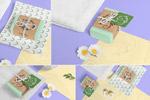 肥皂条包装样机