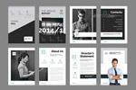 企业年度报告手册