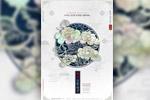 中秋牡丹白描海报