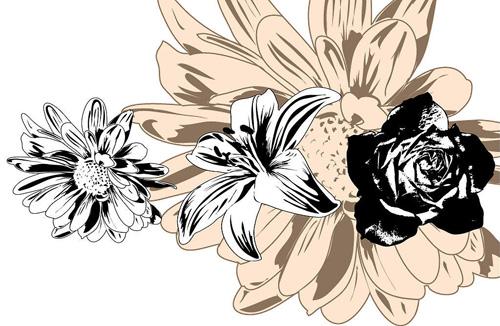 矢量黑白花卉,矢量生物,矢量素材,办公资源,三优山东企业网 产品
