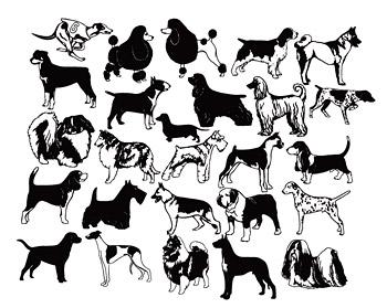 黑白狗犬矢量_矢量家禽家畜