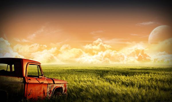 草地上的车