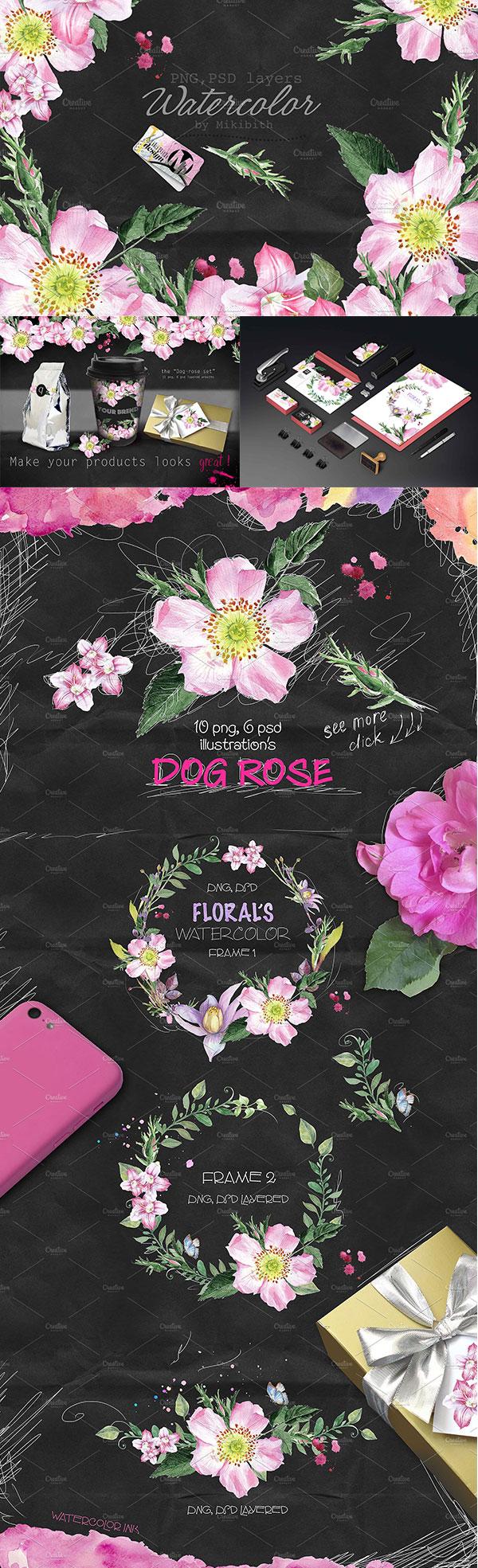 漂亮的犬蔷薇手绘主题psd分层素材,花卉边框,野玫瑰,叶子,黑色背景纸