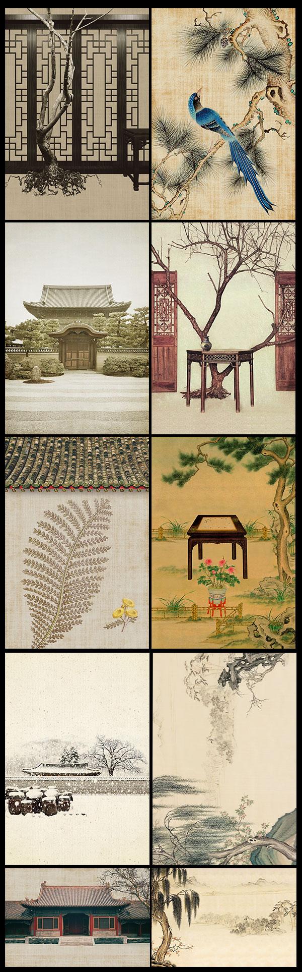中国花鸟工笔画
