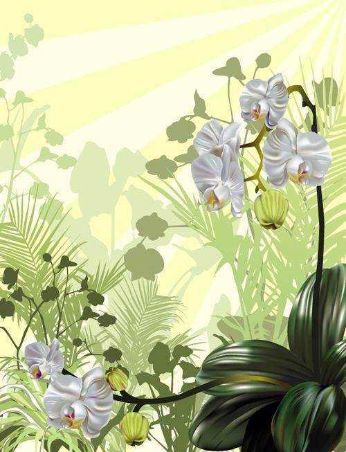 家用兰花房设计图