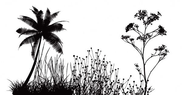 花草椰子树剪影_矢量花草树木
