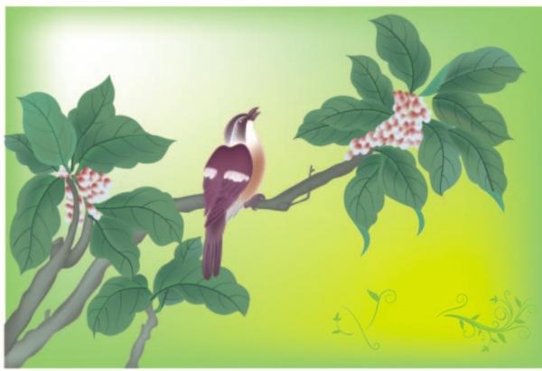 工笔蝴蝶的步骤图解