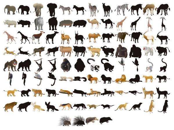 50款动物及剪影