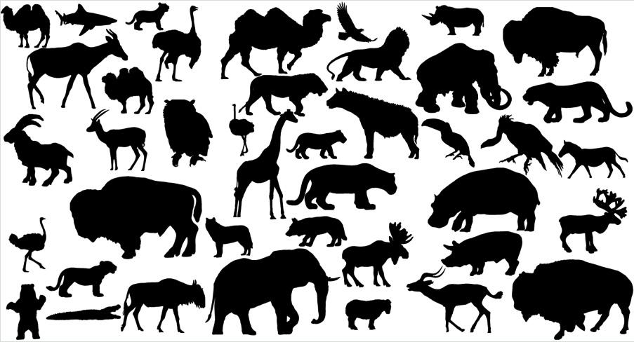 矢量动物剪影_矢量野生动物