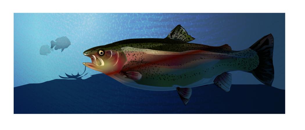 深海鱼矢量