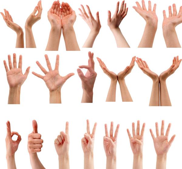 手势图片,手势图片素材,手势素材各种手势,手姿手势图片,捧,双手捧