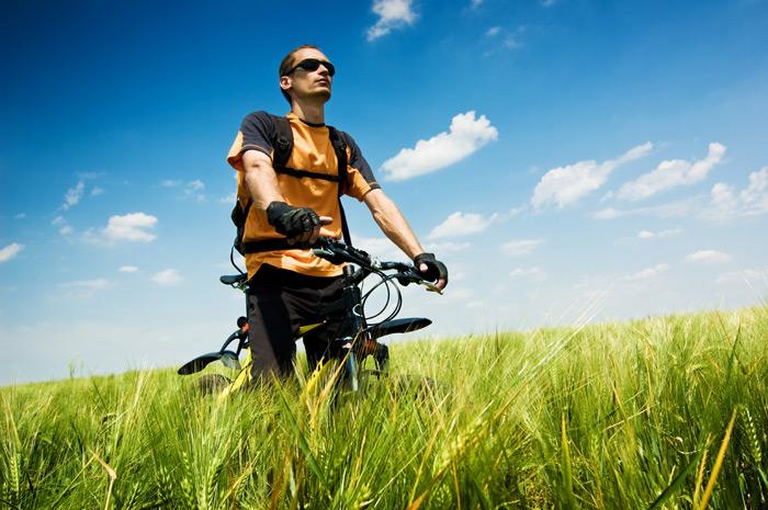 麦田与自行车手
