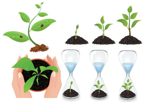 素材分类: 矢量花草树木所需点数: 0 点 关键词: 植物幼苗矢量素材
