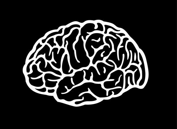 大脑矢量素材