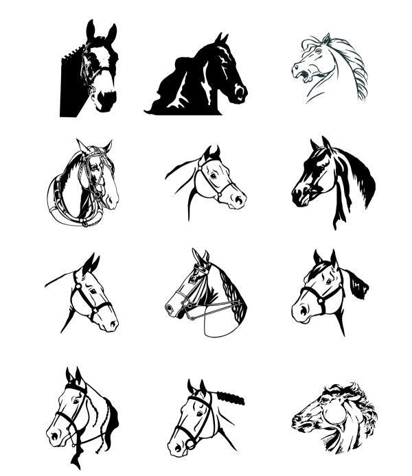 矢量野生动物所需点数: 0 点 关键词: 黑白马头矢量素材,黑白画,马