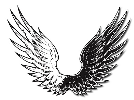 u9ed1 u767d u77e2 u91cf u7fc5 u8180  u7d20 u6750 u4e2d u56fdsccnn com wing vector free download wing vector image