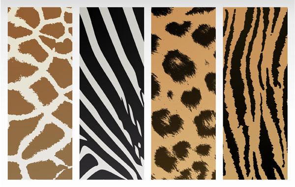 关键词: 动物纹理矢量素材,豹纹,斑马纹,虎纹,动物皮毛,纹理,底纹