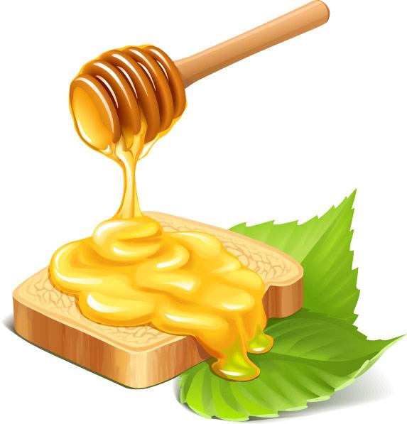 free clipart of honey - photo #8
